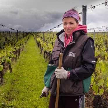 Clarisse and her husband own 6 ha of vineyards, which produce 6 wine varietals